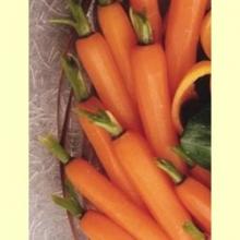 Información sobre el Beta-caroteno