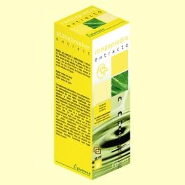 Extracto Rompepiedra - 50 ml - Plameca