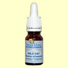 Avena Silvestre - Wild Oat - 10 ml - Lotus Blanc