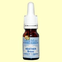Brezo - Heather - 10 ml - Lotus Blanc