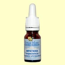 Impaciencia - Impatiens - 10 ml - Lotus Blanc
