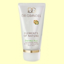 Crema Derma Pur Bio Elements of Nature - 50 ml - Santiveri
