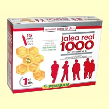 Jalea Real 1000 mg - 15 viales - Pinisan Laboratorios