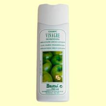 Champú de vinagre de manzana - 250 ml - Bellsola *