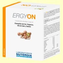 Ergyon - Sistema inmunitario - 30 sobres - Nutergia