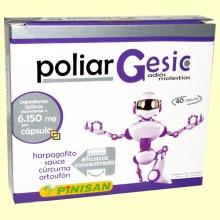 Poliar Gesic - Pinisan Laboratorios - 40 cápsulas