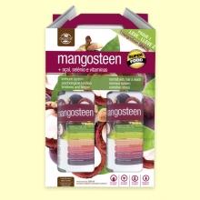 Zumo Natural Mangosteen Plus - 2 litros - Naturmil *