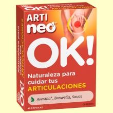 Arti Neo - Articulaciones - 45 cápsulas - Neo