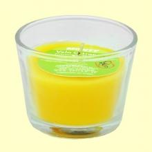 Vela en vaso cristal de citronela - 32 gramos - Monty