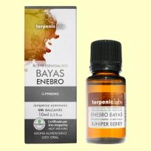 Enebro bayas - Aceite Esencial Bio - 10 ml - Terpenic Labs