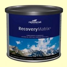 RecoveryMatrix Polvo - 250 gramos - Rejuvenal