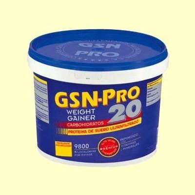GSN Pro 20 Fresa - 2,5 kg - GSN Laboratorios