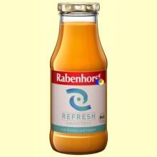 Smoothie Refresh - 240 ml - Rabenhorst