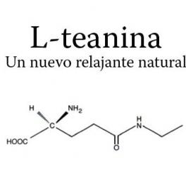 L-Teanina (L-Theanina), un nuevo relajante natural