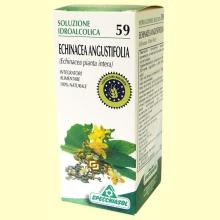 Echinacea Solución Hidroalcohólica - 50 ml - Specchiasol