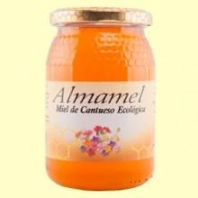 Miel de Cantueso Bio - 500 gramos - Almamel