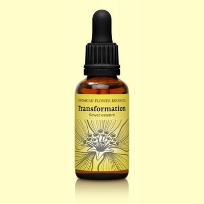 Esencia Floral Findhorn Transformation - 30 ml - Transformación