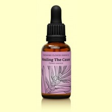 Esencia Floral Findhorn Healing The Cause - 30 ml - Eliminar la Causa