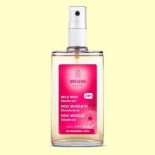 Desodorante de Rosa - 100 ml - Weleda