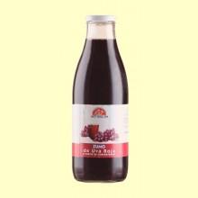 Zumo de Uva Negra - Int- 200 ml -Salim