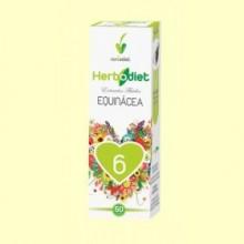 Extracto de Echinácea - 50 ml - Novadiet