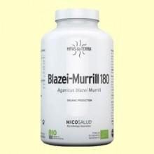 Blazei-Murrill - 180 cápsulas - Hifas da Terra