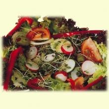 Benéficos germinados, germinados para la salud
