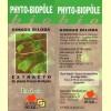 Phyto-Biopôle Bio Ginkgo Biloba - 50 ml - Bipole