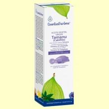 Aceite Vegetal Virgen de Tamanu o Calófilo - 100 ml - Esential Aroms