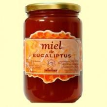 Miel Eucaliptus - 1 kg - Mielar