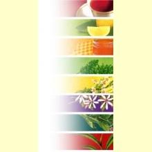 Té de frutas de Manzana Gourmet - 100 gr.