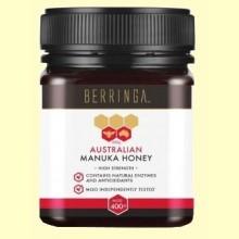 Miel de Manuka 400 MGO - 250 gramos - Berringa