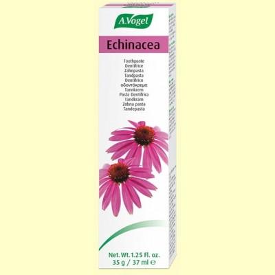 Dentaforce Echinacea - Dentífrico - 100 gramos - A. Vogel