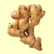 Jengibre raiz polvo (Zingiber officinale ) 100g