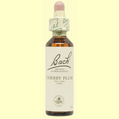 Cerasifera - Cherry Plum - 20 ml - Bach