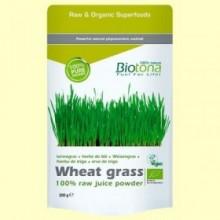 Hierba de Trigo en Polvo Bio - 200 gramos - Biotona