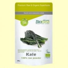 Col Rizada en Polvo Bio - 120 gramos - Biotona