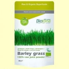 Hierba de Cebada en Polvo Bio - 200 gramos - Biotona