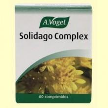 Solidago Complex - Depurativo - 60 cápsulas - A Vogel