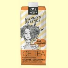 Bebida de Infusión de Frutas sabor Mango - 500 ml - D&B