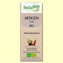 Artigem - Antiinflamatorio y antidolor - 50 ml - Herbal Gem