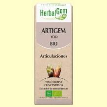 Artigem Bio - Antiinflamatorio y antidolor - 15 ml - Herbal Gem
