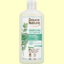 Champú con Eucalipto - 250 ml - Douce Nature