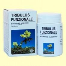 Tribulus Funcional - 60 comprimidos - Gheos