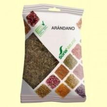 Arándano - 30 gramos - Soria Natural