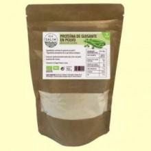 Proteína de Guisante en polvo Bio - 250 gramos - Eco Salim