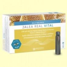 Jalea Real Vital - 20 viales - FDB Laboratorios