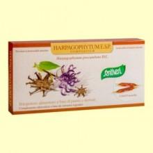 Extracto Seco de Harpagofito - Harpagophytum Compositum - 12 ampollas - Santiveri