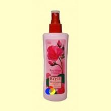 Agua de Rosa Natural Tónico Facial en Spray - 230 ml - Biofresh Rose of Bulgaria