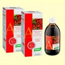 Arándano Rojo Concentrado - pack 2 x 490 ml - Santiveri